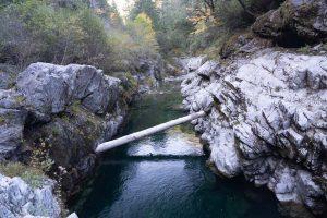 log in Elk River
