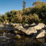 rocks and swift water on the Pistol River