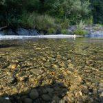 rocks on the Pistol River