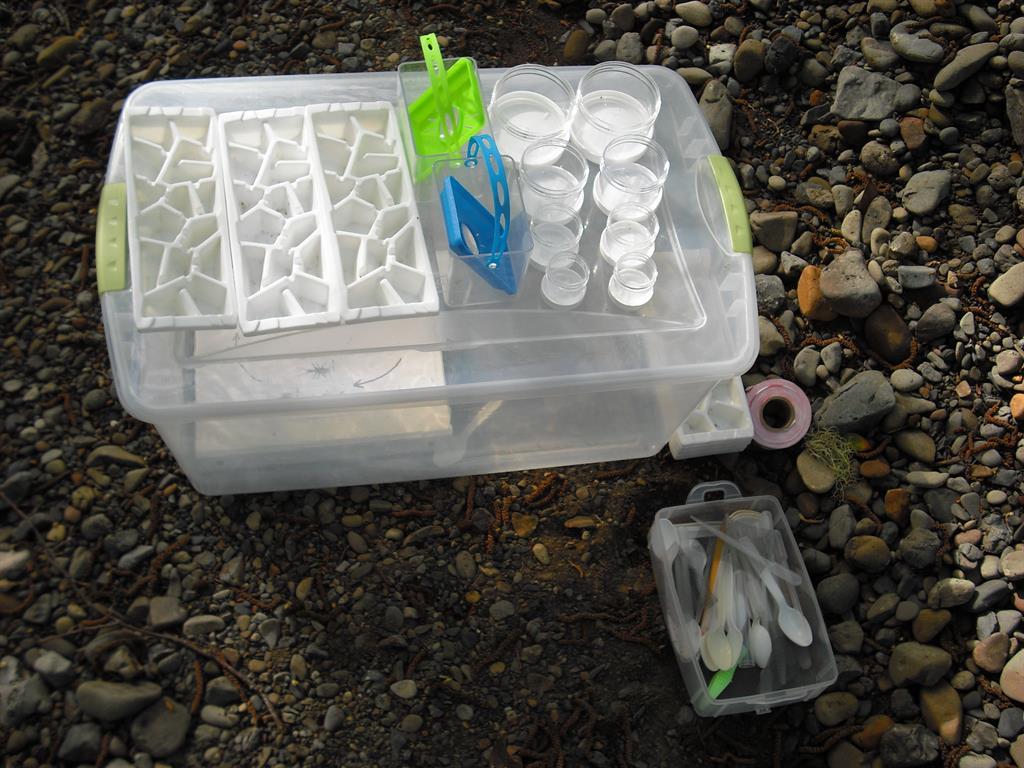 bin full of sampling tools