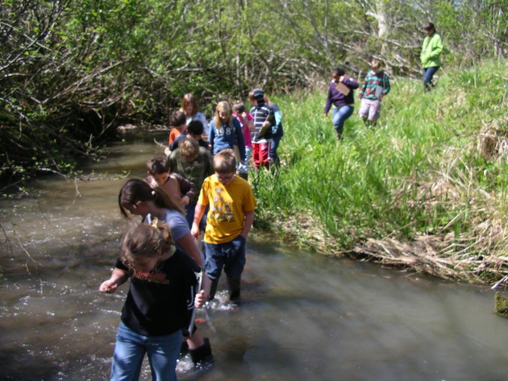 kids walking into creek