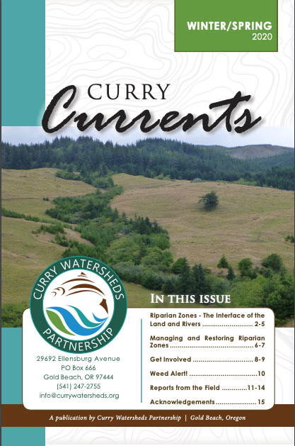 Curry Currents Cover Winter Spring 2020