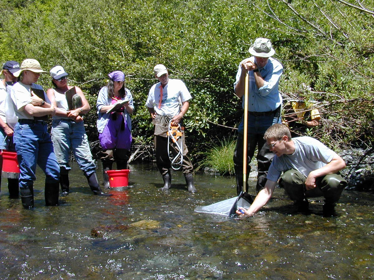 Volunteers assisting with water monitoring