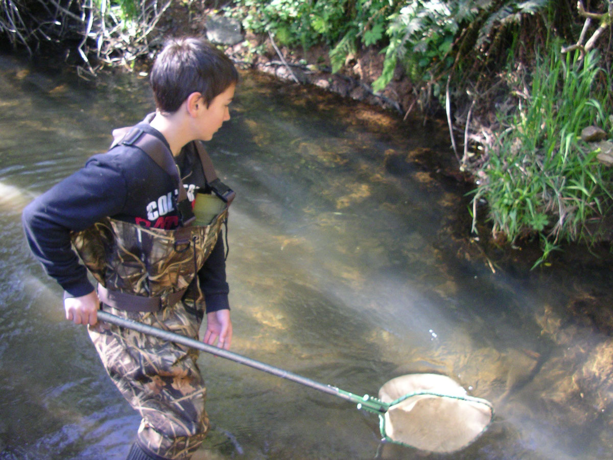 child collecting specimens in water