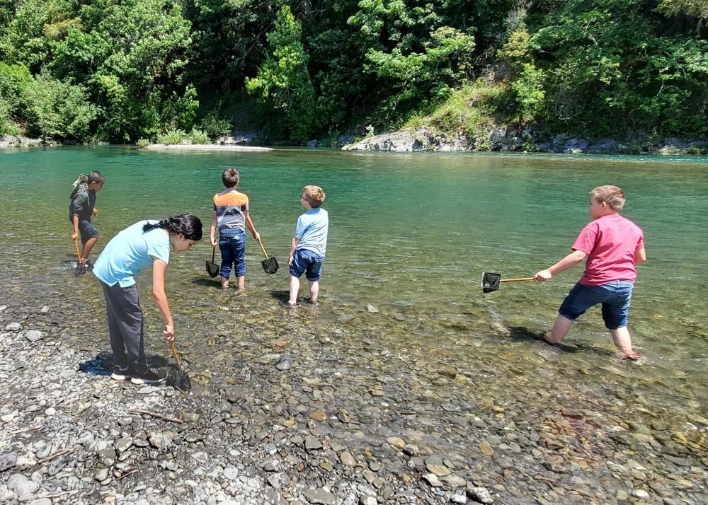 children exploring a river
