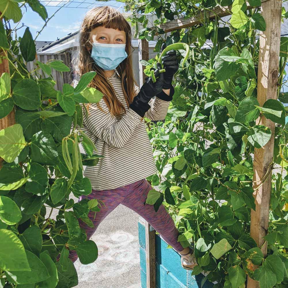 School-Garden-WEB-cwp-website-8
