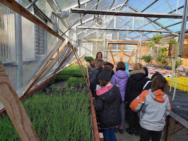 Children inside the greenhouse