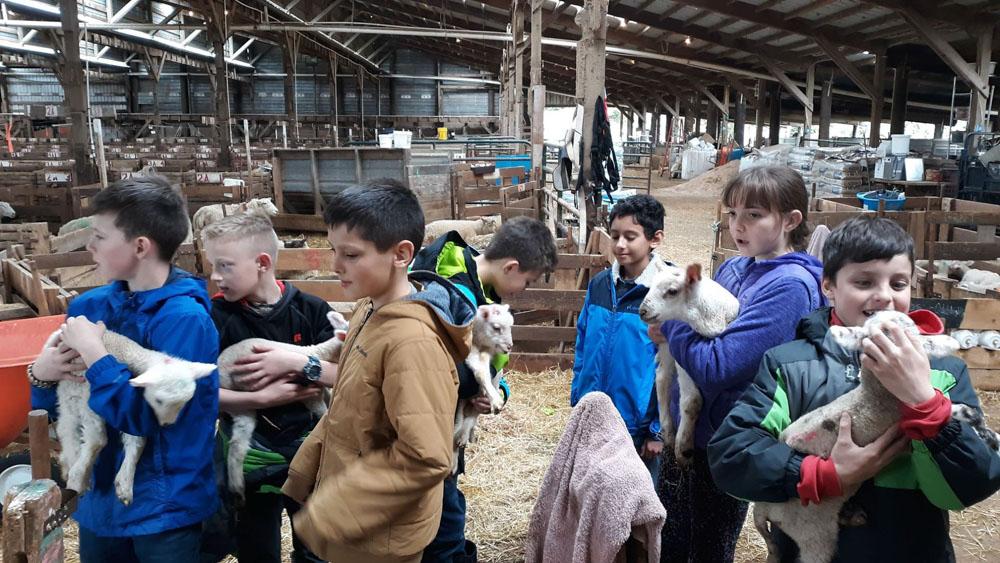 children holding baby animals